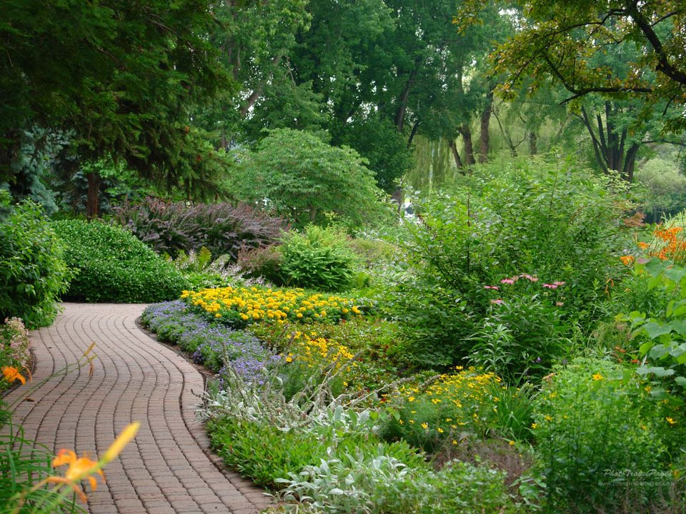 Green yard path with flowers that is cared for by Turning Point